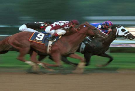 imagenes-caballos-carreras-p.jpg